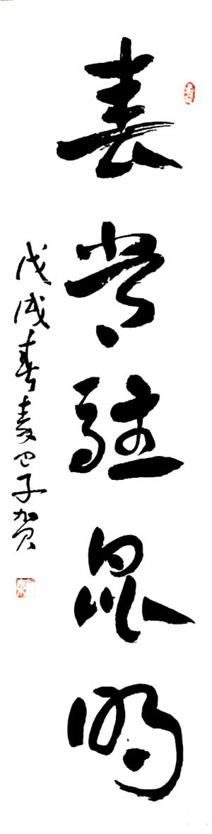 ——诗人、作家秦巴子