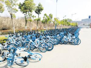 官渡区归十路一侧摆满上千辆哈罗单车。