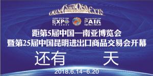 迎接第5届中国—南亚博览会   暨第25届中国昆明进出口商品交易会