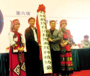 石林县黑木耳种植协会成立。旭日丰华公司供图