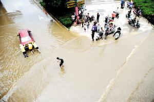 大树营立交桥下严重积水,一辆机动车在水中熄火。   记者赵伟摄