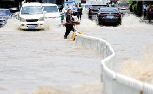 金马立交桥下,有市民在积水处逮到大鱼。